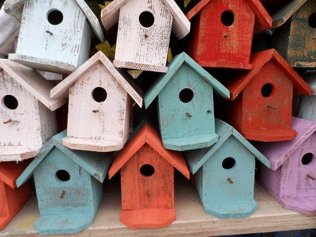 Грунтованные домики для птиц