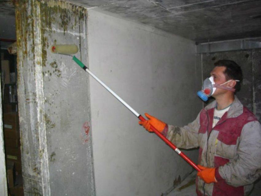 Покраска стен раствором гашеной извести